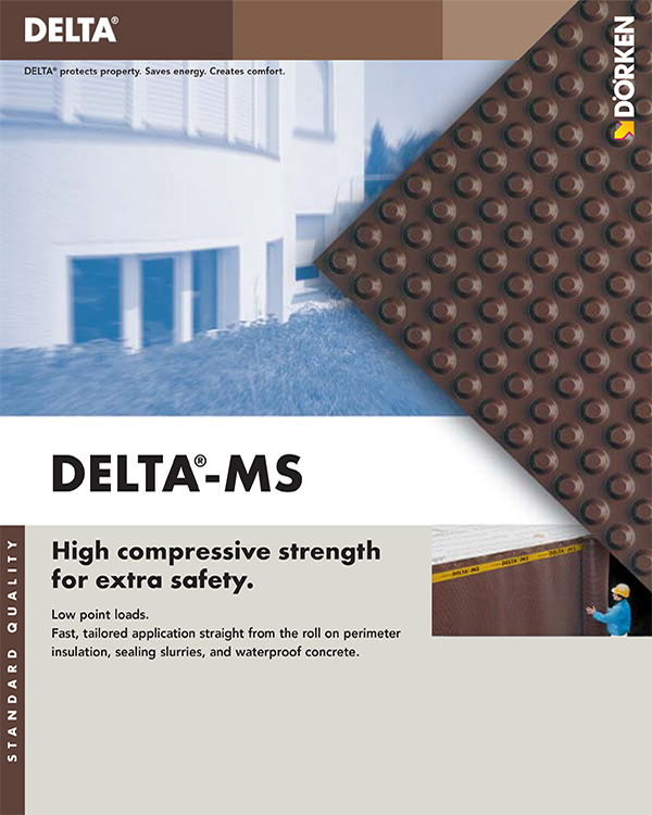 Delta MS Protection