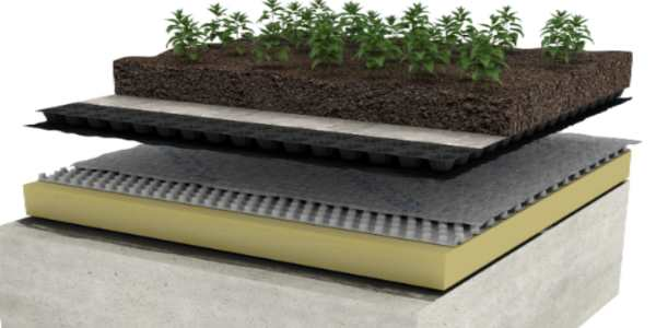 What are the benefits of using Root Barrier Protection in green roofs?